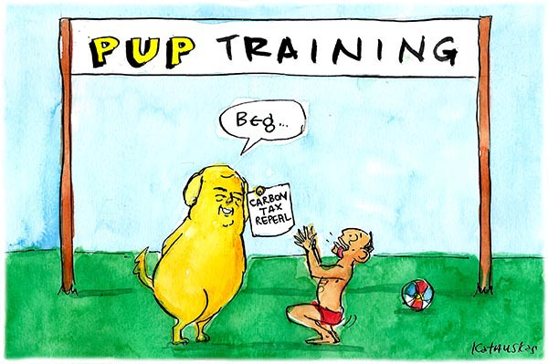 140716 Pup Training 600
